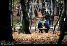 Golestan, Iran - Autumn 00