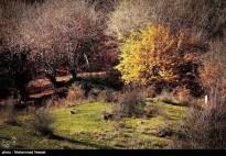Golestan, Iran - Autumn 07