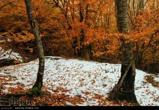 Hamedan, Iran - Autumn in Hamedan 23