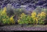 Kermanshah, Iran - Kermanshah, Kambadn in Autumn 08