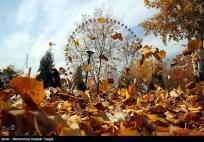Razavi Khorasan, Iran - Mashhad in Autumn 01