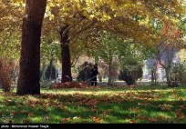 Razavi Khorasan, Iran - Mashhad in Autumn 05