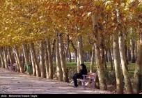 Razavi Khorasan, Iran - Mashhad in Autumn 08