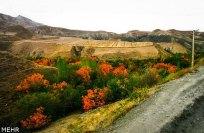 Razavi Khorasan, Iran - Sabzevar in autumn 04