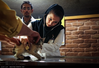 Tehran, Iran - Veterinary Hospital in Tehran 00