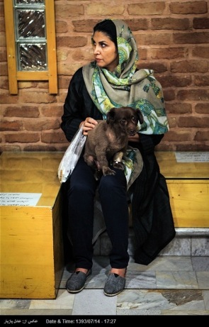 Tehran, Iran - Veterinary Hospital in Tehran 15