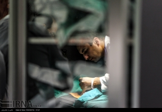 Tehran, Iran - Veterinary Hospital in Tehran 17