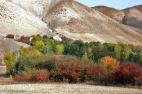 East Azerbaijan, Iran - Arasbaran in Autumn (Photo by Saeed Ghasemi, Mehr News Agency)