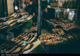 Gilan, Iran - Yalda Night Market 03