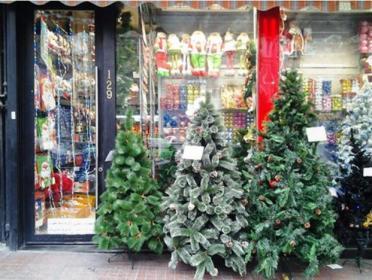 Iran - Christmas 2014 17