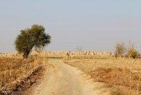 Razavi Khorasan, Iran - Nishapur's ancient city 09