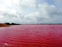 Sistan and Baluchistan, Iran - Chabahar, Lipar's wetland 01