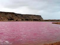 Sistan and Baluchistan, Iran - Chabahar, Lipar's wetland 05