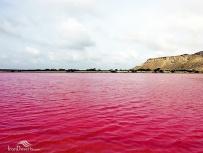 Sistan and Baluchistan, Iran - Chabahar, Lipar's wetland 06