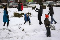 Iran, Kerman Province, Kerman City Winter Snow Snowball 08