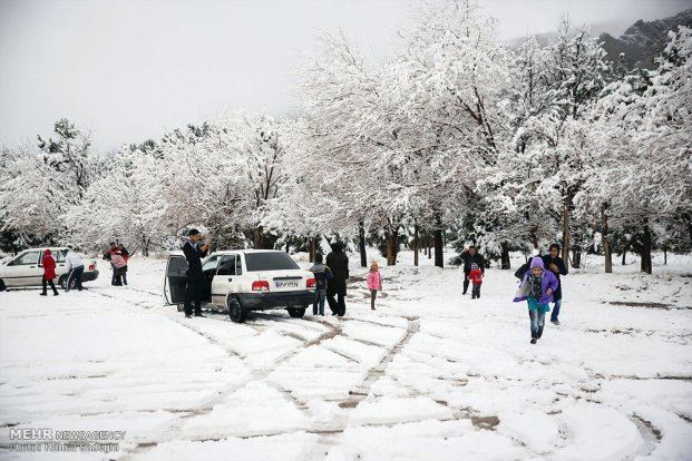 Iran, Kerman Province, Kerman City Winter Snow Snowball 14