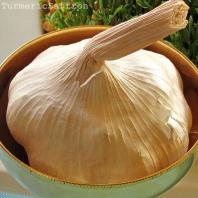 Seer (Garlic) - To ward off bad omens