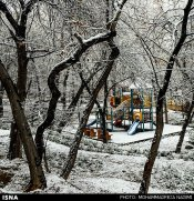Iran, Tehran, Park, Winter snow 00