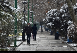 Iran,Tehran, Winter Snow 12