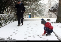Iran,Tehran, Winter Snow 13