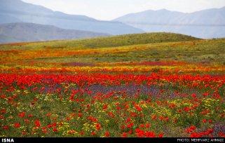 East Azerbaijan, Iran - Arasbaran region 21