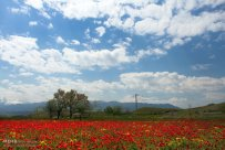 East Azerbaijan, Iran - Arasbaran region 3