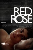 Farsi, Sepideh - Film 2014 - Red Rose - Poster