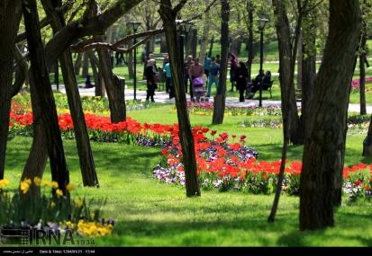 Razavi Khorasan, Iran - Mashhad, Bulbous Flowers Festival 12