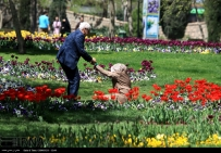 Razavi Khorasan, Iran - Mashhad, Bulbous Flowers Festival 21