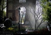Tehran, Iran - Bagh-e Irani Park 15