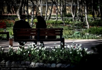 Tehran, Iran - Bagh-e Irani Park 16