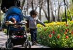 Tehran, Iran - Persian Garden Park 71