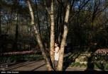 Tehran, Iran - Persian Garden Park 74