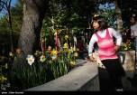 Tehran, Iran - Persian Garden Park 75