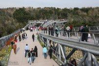 Tehran, Iran - Tabiat pedestrian bridge 12