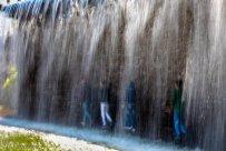 Alborz, Iran - Karaj, Chamran's Park Flower Garden 21