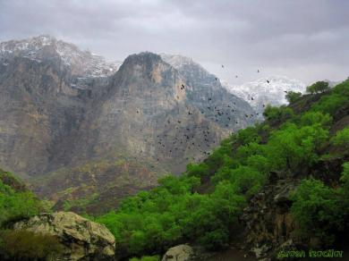 Chahar Mahal and Bakhtiari, Iran - Helen protected area 15
