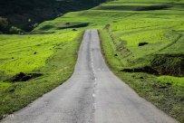 East Azerbaijan, Iran - Kaleybar in spring 13