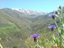 Gilan and Mazandaran, Iran - Eshkevarat 17