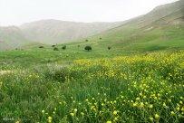 Isfahan, Iran - Fereydunshahr in Spring 11