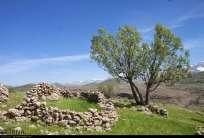 Chaharmahal and Bakhtiari, Iran - Koohrang (Kuhrang) County - Spring 2