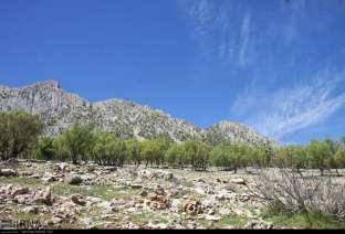 Chaharmahal and Bakhtiari, Iran - Koohrang (Kuhrang) County - Spring 7
