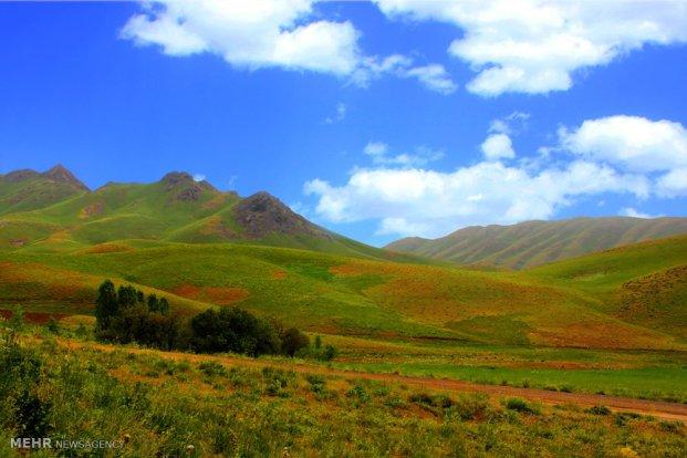 Spring nature in Iran East Azerbaijan Provice 3