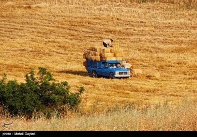East Azerbaijan, Iran - Arasbaran 100