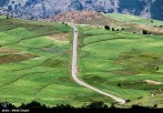 East Azerbaijan, Iran - Arasbaran 118