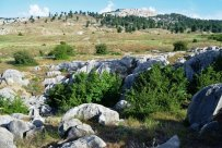 Golestan, Iran - Ramian County, Ghale Maran 3