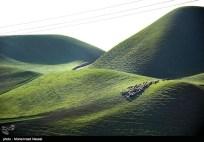 Golestan, Iran - Turkmen Sahra (Plain of Turkmens) 4