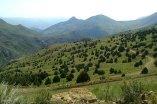 Mazandaran, Iran - Landscapes and nature 11