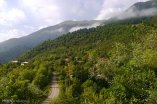 Mazandaran, Iran - Landscapes and nature 16