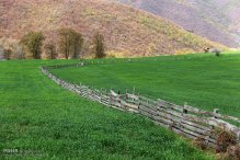 Mazandaran, Iran - Landscapes and nature 7